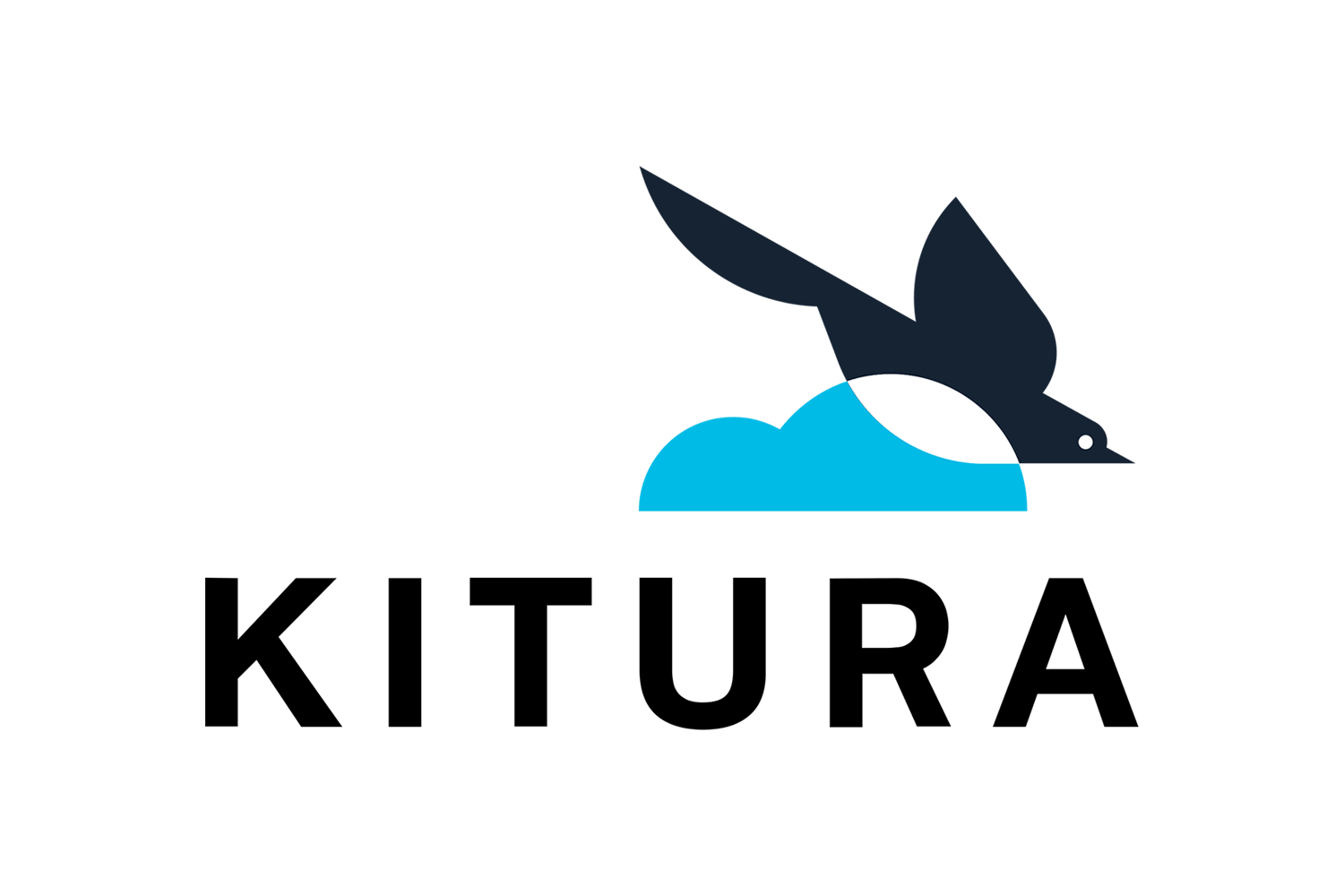 Kitura 2.0 released, adds codable routing